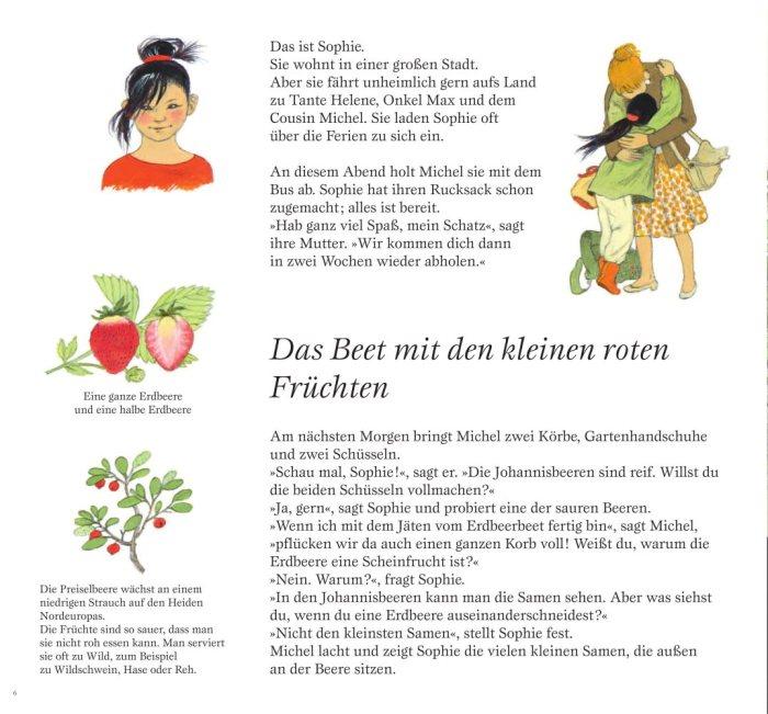 kirschen2