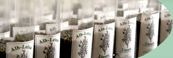 alb-leisa-entwicklung-b