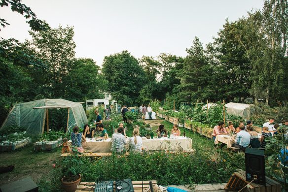 Urban-Gardening_AnnaLinde-Garten-Leipzig-584x390