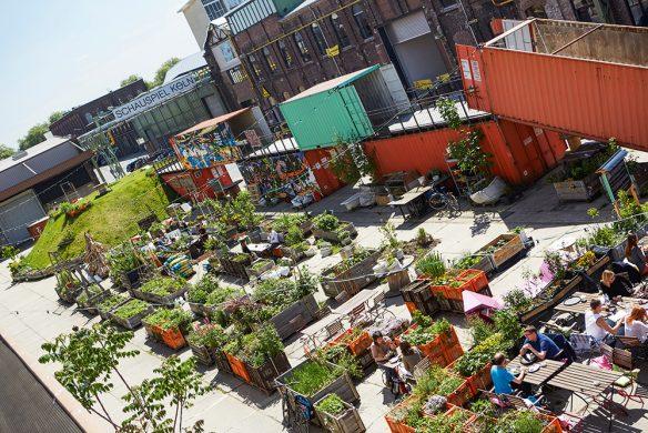 Urban-Gardening_CARLsGARTEN-584x390