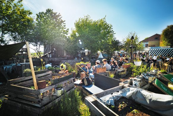 Urban-Gardening_Inselgrün_Biergarten-Opening-584x390