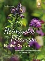 Heimische-Pflanzen-fuer-den-Garten_NjAzOTIzOQ