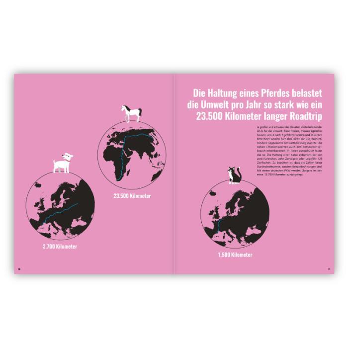 4_102-grune-Karten-zur-Rettung-der-Welt_S-30-31
